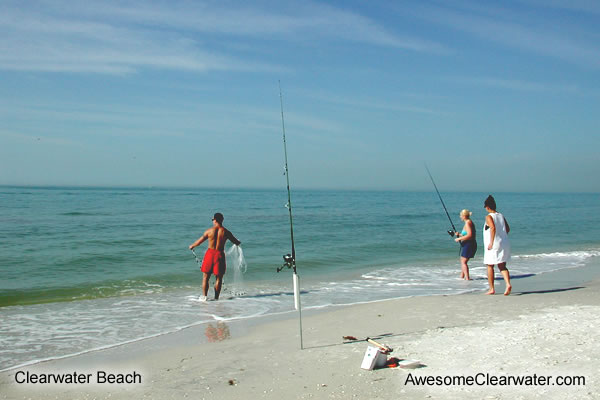 Clearwater beach pictures for Clearwater beach fishing