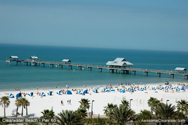 Image gallery pier60 for Clearwater fishing pier