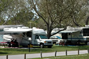 Sherwood Forest RV Park in Palm Habor near Clearwater
